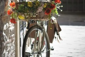 Велосипеды Scott купить в подарок на 8 марта>